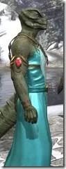 Nibenese Noble's Shawled Robe Argonian Male Close Side