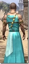 Nibenese Noble's Shawled Robe Male Close Rear