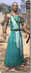 Nibenese Noble's Shawled Robe Male Front