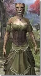 Off-the-Shoulder Evening Dress - Khajiit Female Close Fron  t