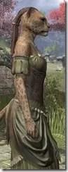 Off-the-Shoulder Evening Dress - Khajiit Female Close Side