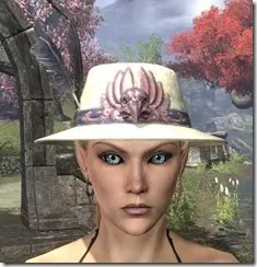 Plumed Mourning Hat Dyed Front