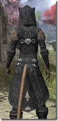 Queen's Eye Spymaster - Khajiit Female Close Rear