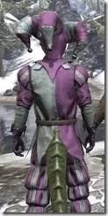 Royal Court Jester - Argonian Male Close Rear