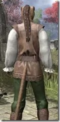 Soiree in Camlorn Evening Outfit - Khajiit Female Close Rear