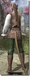Soiree in Camlorn Evening Outfit - Khajiit Female Rear