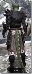 Telvanni Master Wizard - Argonian Male Rear