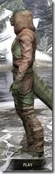 Wood Elf Vanguard - Argonian Male Side