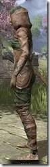Wood Elf Vanguard - Khajiit Female Side