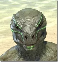 Bright-Throat Algae Face Tattoo Argonian Male Front