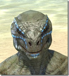 Bright-Throat Woad Face Tattoo Argonian Male Front