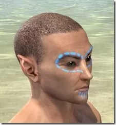 Bright-Throat Woad Face Tattoo Male Right