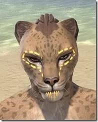 Bright-Throat Yolk Face Tattoo Khajiit Female Front