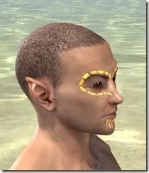Bright-Throat Yolk Face Tattoo Male Right