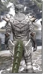 Scalecaller Iron - Argonian Male Close Rear