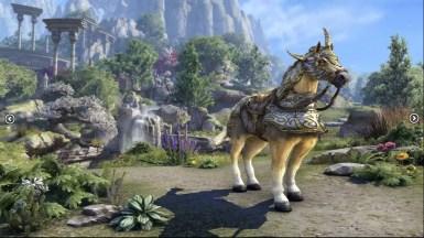 Auroran Zenith Warhorse