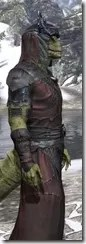 Coldsnap Light - Argonian Male Robe Close Side