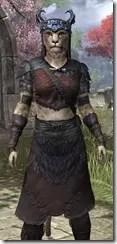 Coldsnap Light - Khajiit Female Shirt Close Front