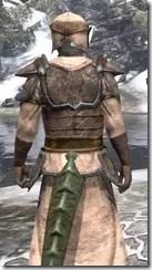 Dark Elf Homespun - Argonian Male Robe Close Rear