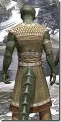 Deepwoods Pod-Singer Tunic Argonian Male Close Rear