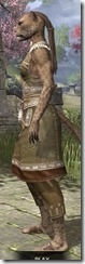 Deepwoods Pod-Singer Tunic Khajiit Female Side