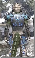 Dro-m'Athra Iron - Argonian Male Close Rear