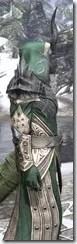 Ebonheart Pact Homespun - Argonian Male Robe Close Side