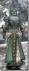 Ebonheart Pact Homespun - Argonian Male Robe Rear