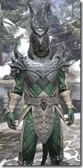 Ebonheart Pact Homespun - Argonian Male Shirt Close Front