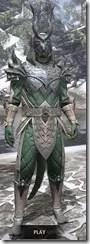Ebonheart Pact Homespun - Argonian Male Shirt Front
