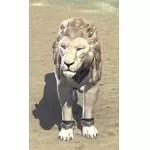 Elinhir Arena Lion