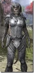 High Elf Steel - Khajiit Female Close Front