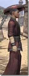 Honor Guard Ancestor Silk - Male Robe Close Side