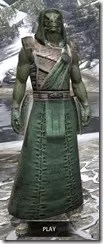 Imperial Homespun - Argonian Male Robe Front