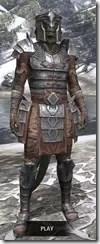 Imperial Steel - Argonian Male Front