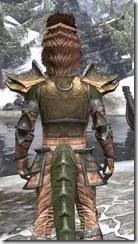 Khajiit Dwarven - Argonian Male Close Rear