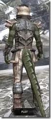 Khajiit Iron - Argonian Male Rear