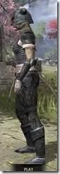 Nord Iron - Khajiit Female Side