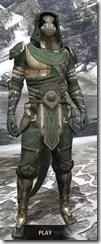 Outlaw Homespun - Argonian Male Robe Front