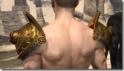 Stonekeeper Pauldrons - Male Rear