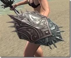 Storm Lord Shield 2