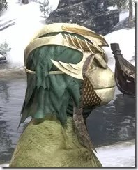 Symphony of Blades Visage - Argonian Male Right