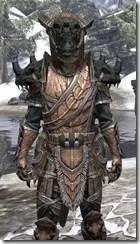 Wood Elf Dwarven - Argonian Male Close Front