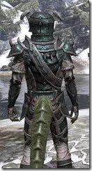 Wood Elf Orichalc - Argonian Male Close Rear