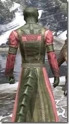 Bardic Tavern Singer's Dress Argonian Male Close Rear