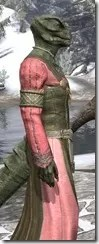 Bardic Tavern Singer's Dress Argonian Male Close Side