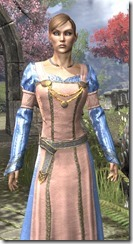 Bardic Tavern Singer's Dress Dyed Close Front