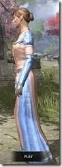 Bardic Tavern Singer's Dress Dyed Side