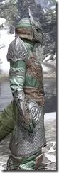 Divine Prosecution Light - Argonian Male Shirt Close Side