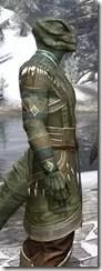 Treethane's Mosaic Jerkin Argonian Male Close Side